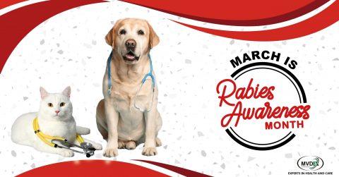 Mvdex-Rabies-Awareness-month